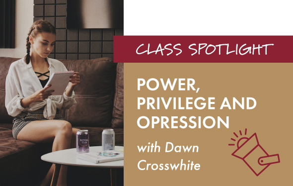 Power, Privilege and Oppression Class Graphic
